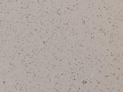 石灰石涂料